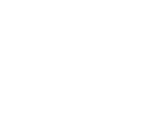 Coriander Seed, maleki commercial co
