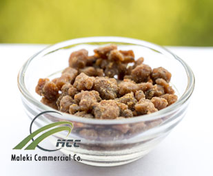 asafoetida gum, maleki commercial co