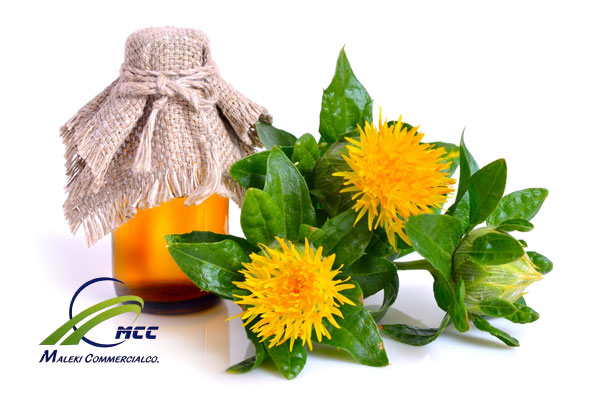 گیاه گلرنگ, maleki commercial co